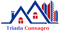 Firma Constructii Triada Consagro - Cluj