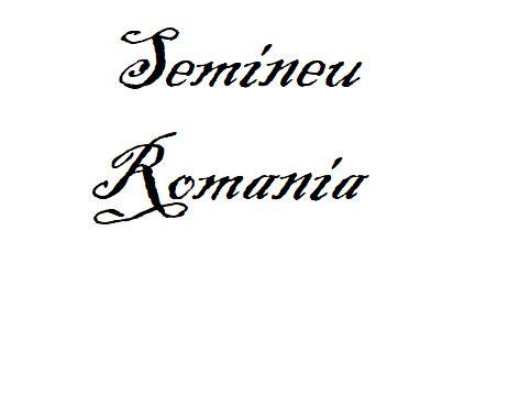 Semineu Romania